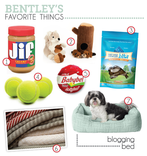 dog treats, dog's favorites, dog toys