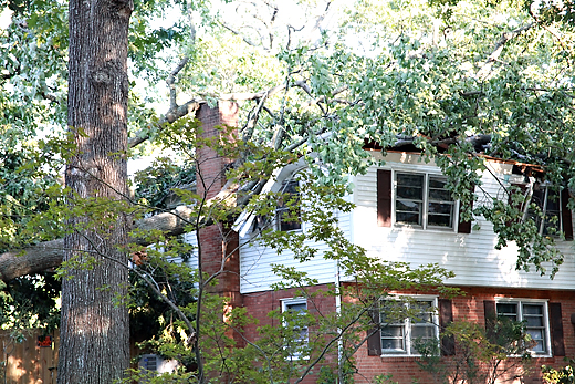 irenehousedamage GOODNIGHT, IRENE