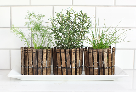 clothespin planters 3 tray