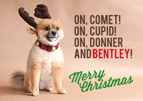 bentleychristmas MERRY CHRISTMAS!