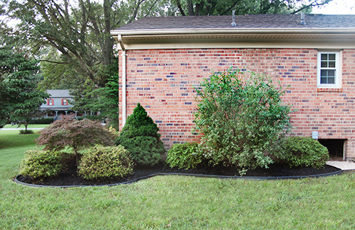 DIY Landscaping 101 / 7th House on the Left