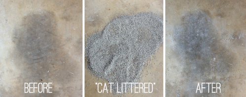 Cat Litter On An Oil Stain? / 7thhouseontheleft.com
