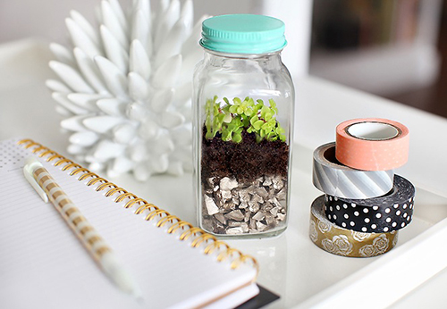 Mini DIY Terrariums using recycling spice jars // 7thhouseontheleft.com