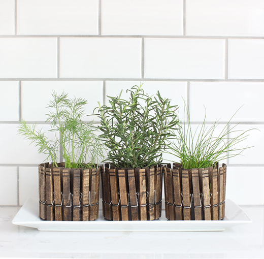 clothespinplanters 3herbs DIY CLOTHESPIN HERB PLANTERS